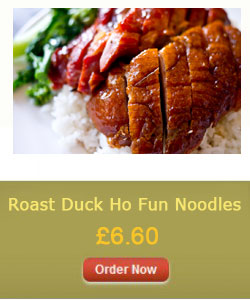 Roast Duck Ho Fun Noodles